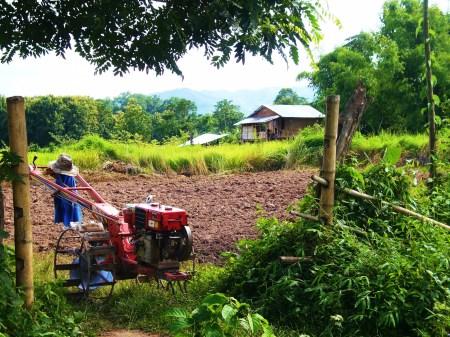 laos loves lawnmowers